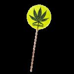 Cannabis Giga Lollipop